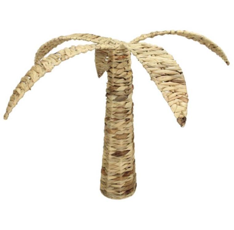 palmier en jacinthe