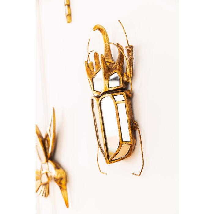 miroir scarabée